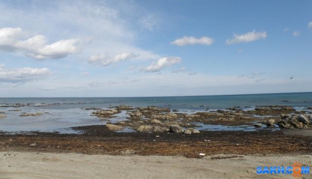 Побережье Охотского моря. Отлив.  Просмотров: 92 Комментариев: 0