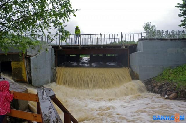 004 Из четырех мини пролетов под мостом, работает только один, конструкция способствует подъему уровня воды в озере  Просмотров: 349 Комментариев: 0