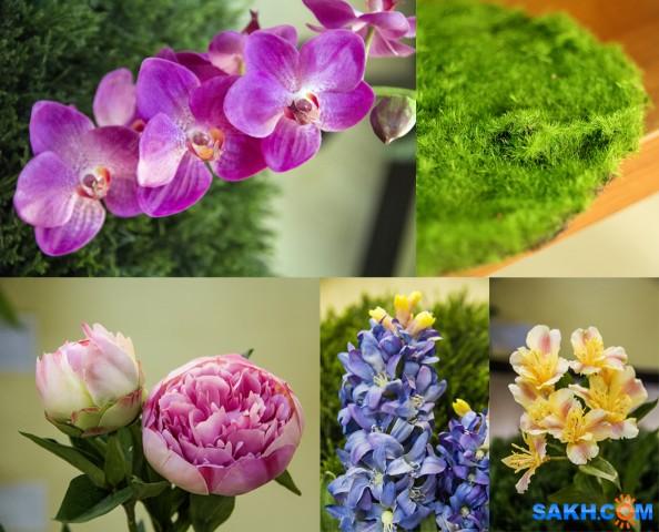 Наши искусственные растения.Заказ Фотограф: нат  Просмотров: 443 Комментариев: 0
