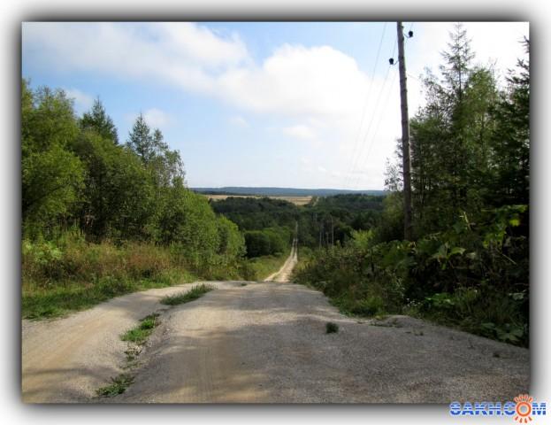 Лесная дорога...  Просмотров: 1014 Комментариев: 0