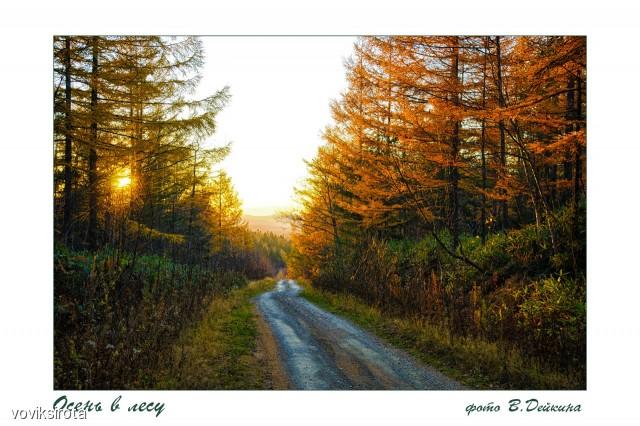 Осень Фотограф: В.Дейкин  Просмотров: 129 Комментариев: 1