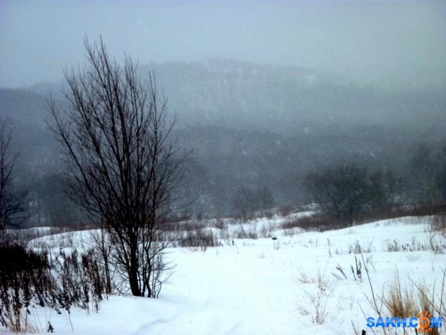а снег идёт...  Просмотров: 353 Комментариев: 0