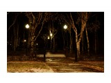Ночной парк  Просмотров: 1158 Комментариев: 0