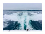 Название: C10BAC9A-D3E9-4021-AC4E-6AF12D3FC5D7 Фотоальбом: Рыбалка Категория: Море  Время съемки/редактирования: 2018:07:26 09:15:19 Фотокамера: Apple - iPhone 6s Диафрагма: f/2.2 Выдержка: 1/506 Фокусное расстояние: 83/20    Просмотров: 1443 Комментариев: 0