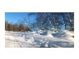 Название: DSC_0242 Фотоальбом: ЗИМА .. уже перед самым мартом.. Категория: Природа Фотограф: vikirin  Просмотров: 1201 Комментариев: 0