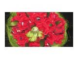 ручной букет 25 роз и бутонов (ассорти конфет)  Просмотров: 2129 Комментариев: 0