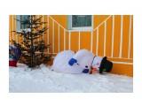 Снеговик после новогоднего корпоратива... Фотограф: 7388PetVladVik  Просмотров: 3049 Комментариев: 1