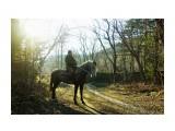 Утром в лесу Фотограф: В.Дейкин  Просмотров: 645 Комментариев: 0
