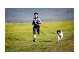 Название: IMG_3782 Фотоальбом: Шустрые лапы Категория: Животные  Просмотров: 117 Комментариев: 0