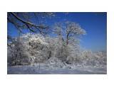 Зима Кубани Фотограф: gadzila  Просмотров: 309 Комментариев: 0