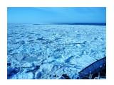 К чистой воде   Фотограф: 7388PetVladVik  Просмотров: 4959 Комментариев: 0