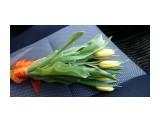 DSC_1563 С праздником Весны вас Женщины!:)  Просмотров: 579 Комментариев: 0