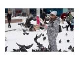 Птицы... Фотограф: VictorV  Просмотров: 1572 Комментариев: 2