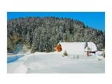 DSC05042_новый размер Фотограф: В.Дейкин  Просмотров: 2519 Комментариев: 0