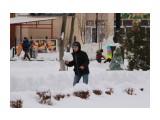 снежок  Просмотров: 17 Комментариев:
