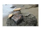 Камни на клумбу... Фотограф: vikirin  Просмотров: 1615 Комментариев: 0