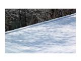 Апрельский снег напугать не может... Фотограф: vikirin  Просмотров: 2377 Комментариев: 0