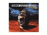 Название: 01 Фотоальбом: scorpions Категория: Разное  Просмотров: 402 Комментариев: 0