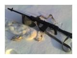Название: 2812957 Фотоальбом: охота с сайгой Категория: Рыбалка, охота  Просмотров: 911 Комментариев: 1