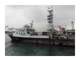 CIMG0568 американский  тунцелов  остров тайвань город  каушёнг  Просмотров: 1242 Комментариев: 0