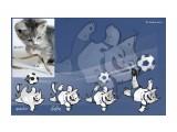 R-444_w Фотограф: © marka голосование за талисман футбольной команды: http://fc-sakhalin.ru/logo.php  Просмотров: 1249 Комментариев: 0