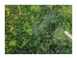 Название: 921D43A4-B504-416A-A607-0A48B9CF2D13 Фотоальбом: Императорское озеро Категория: Туризм, путешествия Фотограф: Tsygankov Yuriy  Время съемки/редактирования: 2018:09:30 11:24:01 Фотокамера: DJI - FC220 Диафрагма: f/2.2 Выдержка: 123/67694 Фокусное расстояние: 473/100    Просмотров: 993 Комментариев: 0