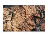 Красивенные каменюки... Фотограф: vikirin  Просмотров: 1888 Комментариев: 0