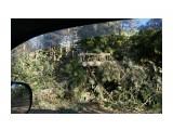 Название: После циклона дорога завалена сломаными лиственницами и елками Фотоальбом: 2015 10 05 Даги Категория: Туризм, путешествия Фотограф: vikirin  Время съемки/редактирования: 2015:10:04 16:14:25 Фотокамера: SONY - NEX-5T Диафрагма: f/5.6 Выдержка: 1/80 Фокусное расстояние: 230/10    Просмотров: 1153 Комментариев: 0