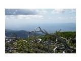 Название: Души погибшего стланника Фотоальбом: Гора Быкова - высота 954 метра Категория: Природа Фотограф: VictorV  Время съемки/редактирования: 2008:09:09 00:06:58 Фотокамера: KONICA MINOLTA - ALPHA-7 DIGITAL Диафрагма: f/6.3 Выдержка: 625/1000000 Фокусное расстояние: 70000000/1000000 Светочуствительность: Array   Просмотров: 1889 Комментариев: 0
