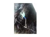 серебряные крючки Корюшка- Произведены фирмой Маруто