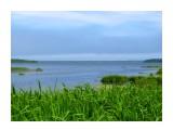 Камыши и море Фотограф: vikirin  Просмотров: 4836 Комментариев: 0