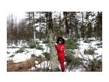 IMG_5309 Фотограф: vikirin  Просмотров: 718 Комментариев: 0