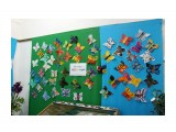 Благовещенск.На выставке бабочек Фотограф: vikirin  Просмотров: 1599 Комментариев: 0