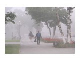 туман  Просмотров: 170 Комментариев: 1