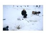 DSC00767 Фотограф: vikirin  Просмотров: 907 Комментариев: 0