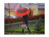 Краски дождливого дня  Просмотров: 1376 Комментариев: 0