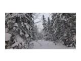 Зима на перевале.. Фотограф: vikirin  Просмотров: 975 Комментариев: 0