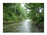 Один из видов реки Излучной! Фотограф: viktorb  Просмотров: 784 Комментариев: 0