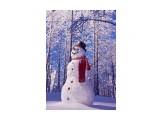 Название: Снеговик-вик-вик Фотоальбом: Природа-2 Категория: Природа  Просмотров: 43 Комментариев: 0