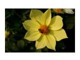 DSC03807 Фотограф: vikirin  Просмотров: 449 Комментариев: 0