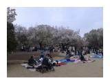 Название: 20190414_130103 Фотоальбом: Япония, апрель 2019 Категория: Туризм, путешествия  Время съемки/редактирования: 2019:04:20 21:45:15 Фотокамера: samsung - SM-G355H Диафрагма: f/2.6 Выдержка: 0/1000 Фокусное расстояние: 331/100    Просмотров: 397 Комментариев: 0