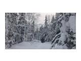 Зима на перевале.. Фотограф: vikirin  Просмотров: 1080 Комментариев: 0