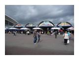 Комаровский рынок! Фотограф: viktorb  Просмотров: 853 Комментариев: 0