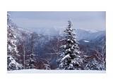 южный склон* Фотограф: © marka  Просмотров: 1386 Комментариев: 0