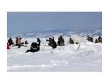 На льду отдыхали... клева не было Фотограф: vikirin  Просмотров: 1700 Комментариев: 0