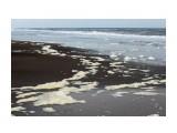Берег Охотского моря.. сколько пены Фотограф: vikirin  Просмотров: 1485 Комментариев: 0