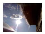 Капель на солнце Фотограф: vikirin  Просмотров: 3323 Комментариев: 0