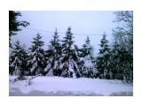 Зима пришла Фотограф: gadzila  Просмотров: 1498 Комментариев: 0