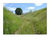 Или между небом и землей! Фотограф: viktorb  Просмотров: 697 Комментариев: 0