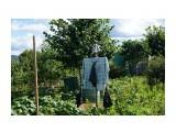 DSC03994 Фотограф: vikirin  Просмотров: 565 Комментариев: 0